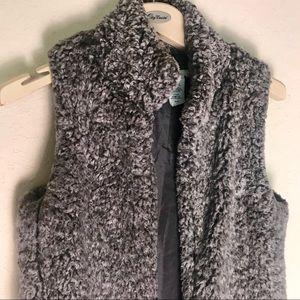 Brittany Black teddy bear 🧸 vest size: small